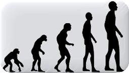 Las ideas de estudiantes chilenos acerca de la evolución de los seres vivos: ¿qué piensan al término de la enseñanza primaria?
